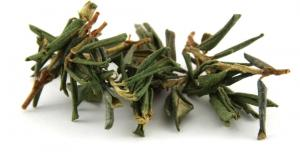 What is tea made from rhododendron and how to cook it?