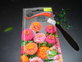 Zinnias varieties and hybrids of petunias that I chose for the season 2019